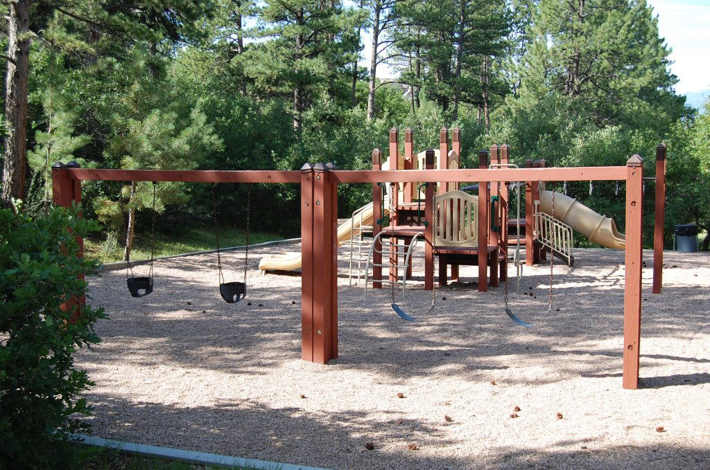 Park with swings and a play structure